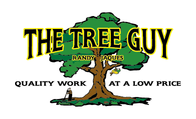 The Tree Guy