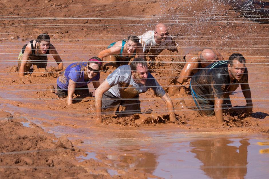 mud crawlers