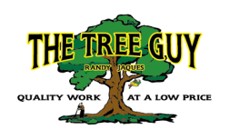 The Tree Guy sponsor of the FREE kiddie mudder